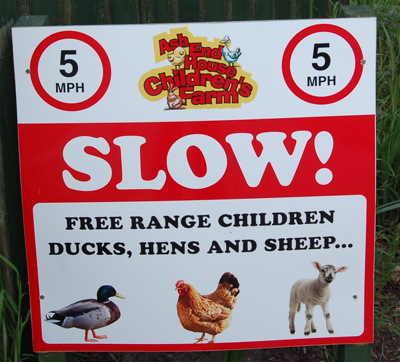 Free range children at Ash End House Farm