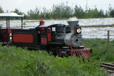 Iron Moose express train at Twinlakes family theme park in leicestershire